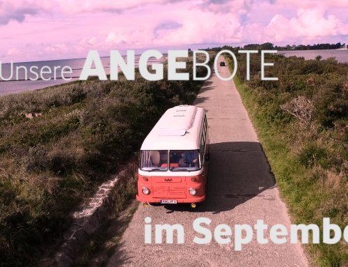 September – Schnäppchen